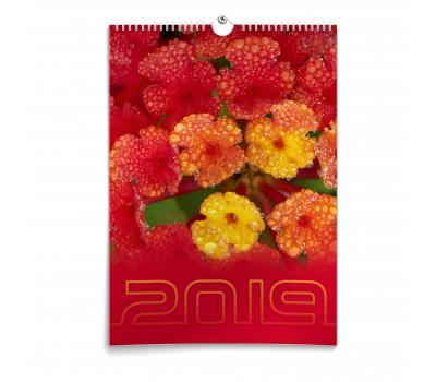 Календарь - Лантана